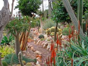 A view in the restored 1965 succulent garden of Soekershof